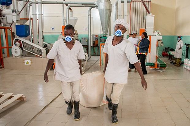 training on training on Improving fortification efficiency of maize flour and wheat flour
