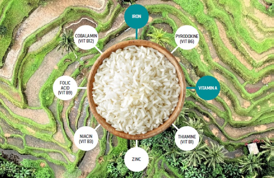 Rice Fortification – What Is It and What Can iCheck Do?