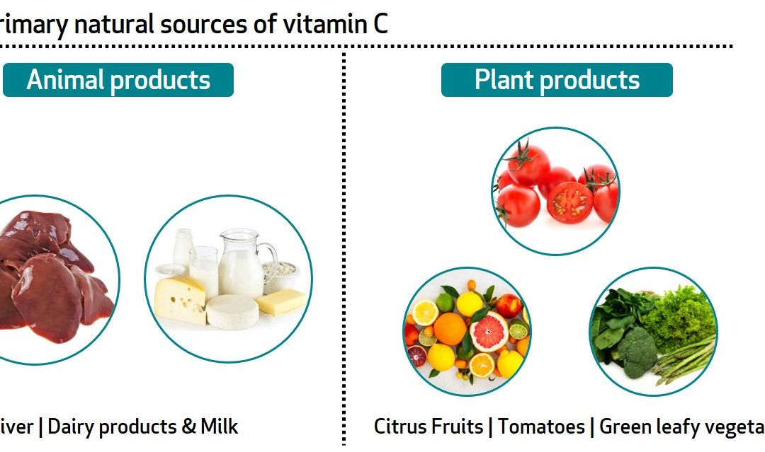 Learn About Your Vitamins and Minerals: Vitamin C and Zinc