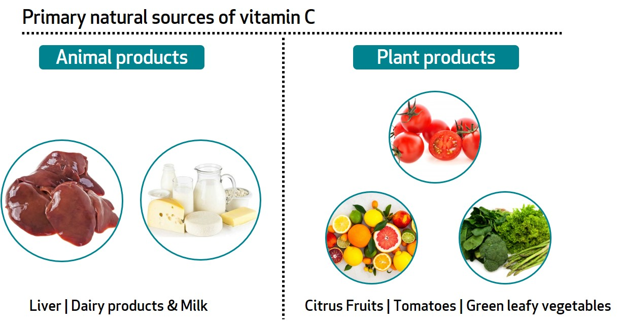 vitamin c sources
