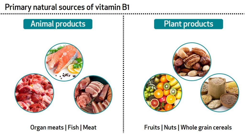 Learn About Your Vitamins And Minerals Vitamin B1 And Magnesium Bioanalyt