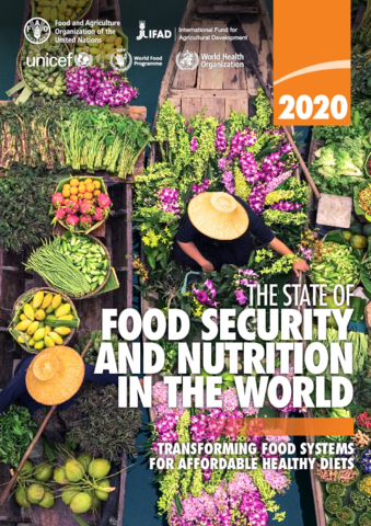 Key Points from The State of Food Security and Nutrition in the World (SOFI) 2020 Report