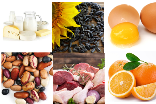 Learn About Your Vitamins and Minerals: Vitamin B9 and Phosphorus