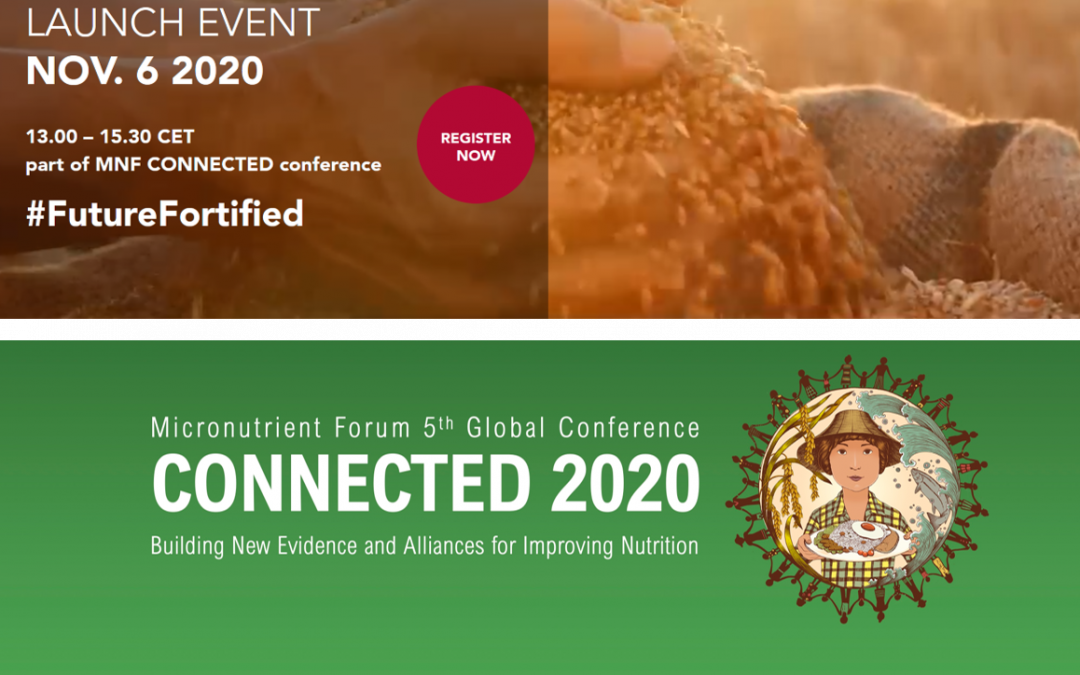 Highlights from the 2nd Global Summit on Fortification and the Micronutrient Forum 5th Global Conference